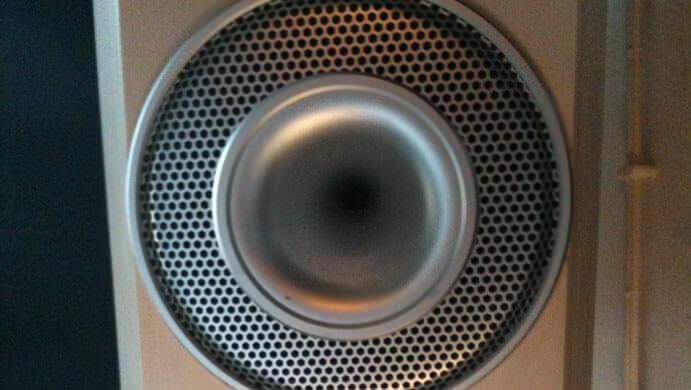 Bullfrog speakers