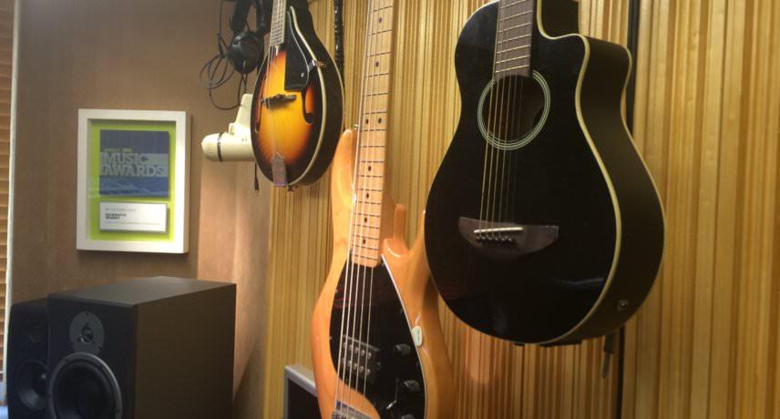 Guitars, Bass & Mandolin